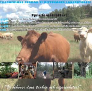 Tematräff om landsbygd