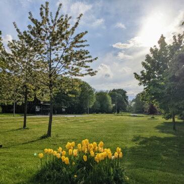 Digital sommar-AW med info från byföreningen